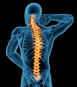 Anatomy of a man showing back pain. Isolated on a black background.Anatomy of a man showing back pain. Isolated on a black background.